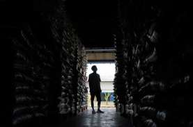 Perpadi: MoU Impor Beras Indonesia dengan Thailand…