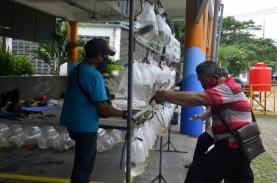 Ada Penjual Ikan Hias di Sentra Ikan Bulak Surabaya…