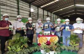 Buma Cima Nusantara Bidik Laba Rp112 Miliar