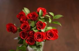 Teh Bunga Racikan Ini Bisa Perbaiki Mood Anda