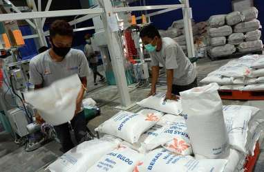 Bulog Jateng Ditargetkan Menyerap 204.000 Ton Gabah Petani
