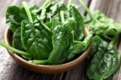 10 Makanan Bikin Awet Muda untuk Usia di Atas 40 Tahun