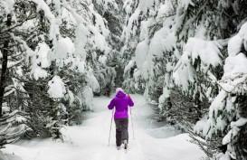 Mengenal Friluftsliv, Konsep Hidup Bahagia Orang Norwegia