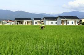 Pertanian Sumbang Pertumbuhan Ekonomi Terbesar Kedua, Tapi Masih Terkendala