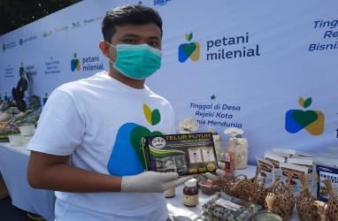 Kisah Sukses Petani Muda Sukabumi Kembangkan Burung Puyuh