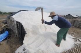 Garam Impor Bakal Masuk Indonesia, Ini Langkah Pemprov…