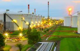 HARGA KOMODITAS ENERGI: Sinyal Positif untuk Permintaan