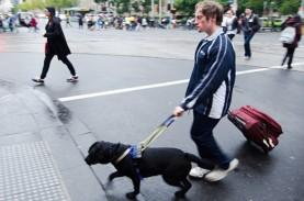 Tips Travelling Bagi Penyandang Disabilitas