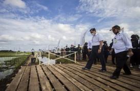 Food Estate Pulang Pisau Harus Disokong Rekayasa Tata Kelola Air