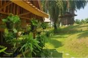 Kampung Agrinex, Destinasi Agrowisata Yang Dikunjungi Sandiaga