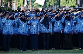 ASN Resmi Dilarang Mudik dan Juga Diminta Tak Ajukan Cuti, Kecuali..