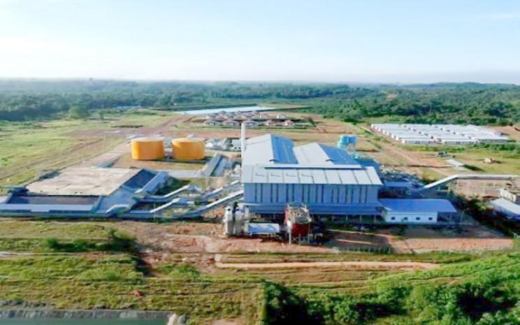 Pabrik Kelapa Sawit (PKS) kedua PT Palma Serasih Tbk. (PSGO) di Kalimantan Timur.  - PSGO