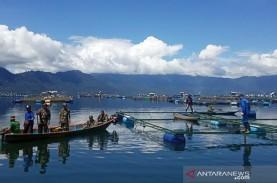 Lima Ton Ikan Nila Milik Petani di Danau Maninjau…