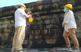 Minyak Atsiri Resmi Jadi Bahan Perawatan Candi Borobudur