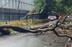 Fenomena Awan Cimulonimbus, Palembang Diterjang Angin…