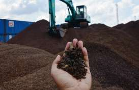 Kaltim Berpotensi Ekspor 1,74 Juta Ton Cangkang Sawit ke Jepang