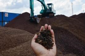 Kaltim Berpotensi Ekspor 1,74 Ton Cangkang Sawit ke…