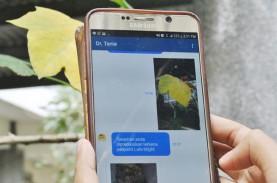 Startup Ini Manfaatkan AI Bantu Petani Deteksi Penyakit…