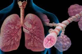 Inhaler untuk Asma Tekan Tingkat Keparahan Covid-19