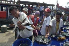 KKP Lepas Ekspor Produk Perikanan ke 40 Negara Senilai…