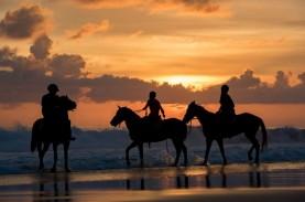 Hotel NIHI Sumba Tawarkan Pengalaman Berkuda Sambil…