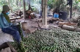 Berkah Ramadan untuk Petani Kolang-kaling di Purwakarta