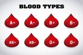 37,9 Juta Penduduk Lapor Golongan Darah, Jenis B-…
