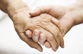 Makanan Pencegah Demensia dan Bikin Otak Lebih Sehat