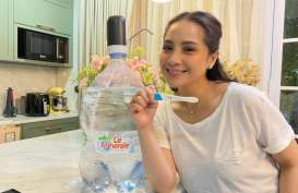 Istri Raffi Ahmad, Nagita Slavina Hamil Anak Kedua
