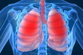 Ini Dia Nutrisi Penting untuk Penderita Penyakit Paru-paru