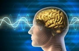 Virus Corona Tidak Menginfeksi Otak, tapi Tetap Timbulkan Kerusakan