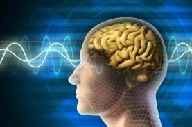 Virus Corona Tidak Menginfeksi Otak, tapi Tetap Timbulkan…