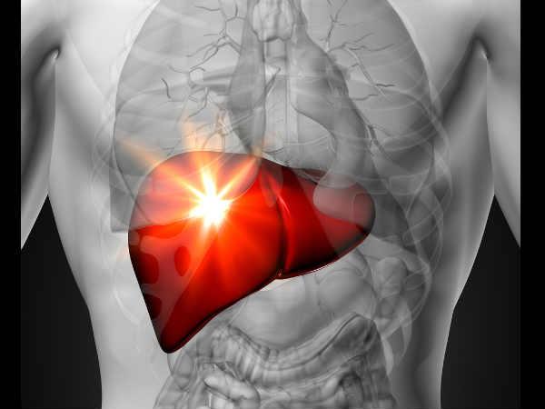 Organ hati (liver).  - boldsky