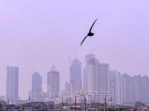 World Air Quality Index Nyatakan Kualitas Udara di Ibu Kota Tidak Sehat