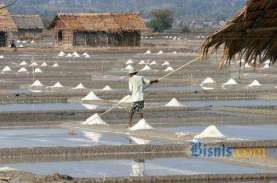 Ungkap 3 Masalah Importasi Garam, KPPU: Rawan Dikuasai…