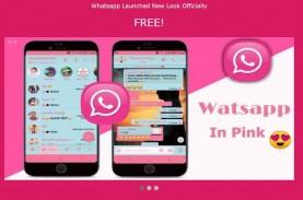 Viral Tautan WhatsApp Pink, Hati-hati Akunmu Dibajak