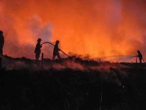 Kebakaran Lapak Ban Bekas di Bogor Belum Bisa Dipadamkan