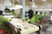 Perusahaan Rudy Tanoe Siap Distribusi Produk Sido Muncul (SIDO)