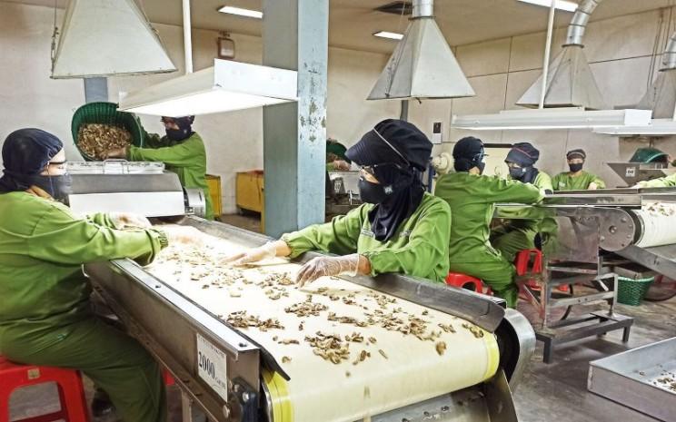 Aktivitas di pabrik pembuatan jamu Sido Muncul. - sidomuncul.co.id