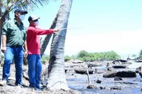Pulau Bengkalis Kehilangan Pekuburan Hingga Lapangan…