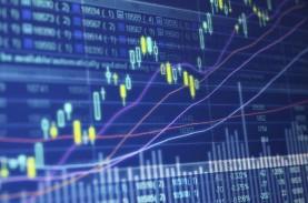 Tips Investasi Forex untuk Pemula