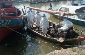 146 Kapal Nelayan Diterjunkan untuk Bersihkan Ceceran Minyak Mentah di Karawang
