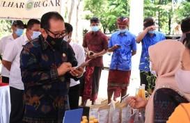 Bali Bakal Bentuk Asosiasi Pengobatan Tradisional