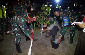Pemprov NTB dan TNI Kembangkan 100 Hektare Lahan Food Estate di Sumbawa Barat