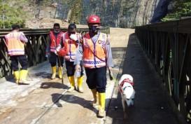 Longsor Telan 12 Orang di Tapanuli Selatan, Pencarian Melibatkan Anjing Pelacak