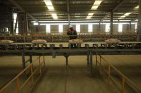 Semen Baturaja Rambah Platform E-commerce, Jual Semen…