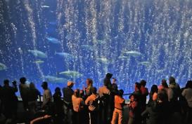 Tengok 9 Akuarium Terkeren di Dunia