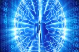 BPJPH Jajaki Penggunaan Artificial Intelligence untuk…