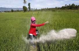 Pertumbuhan Ekonomi Lampung Kuartal I 2021 Kontraksi 2,1 Persen