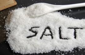 Jangan Skip Konsumsi Garam, Ini Panduan Batasannya Versi WHO